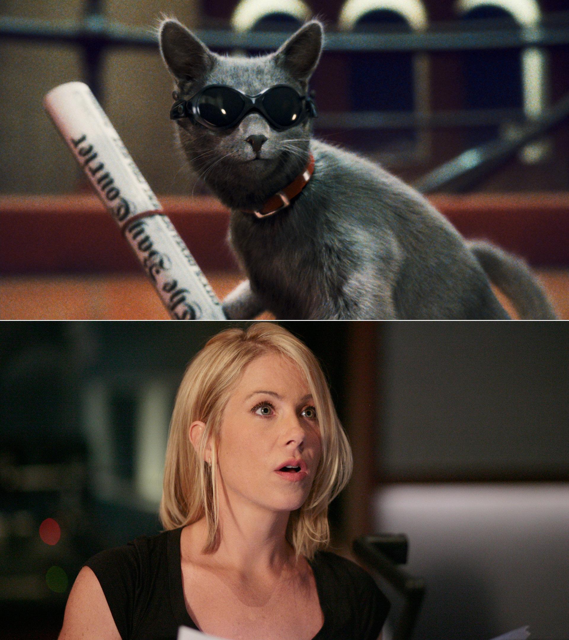 Картинки кошки против женщин